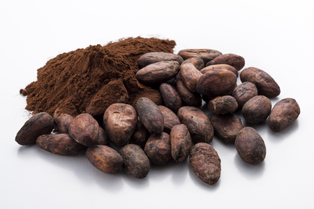 Cocoa powder and cocoa beans Standard-Bild