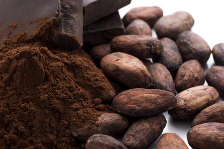 granos del chocolate y el cacao en polvo y cacao