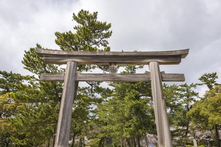 unattended: Izumo Taisha torii of