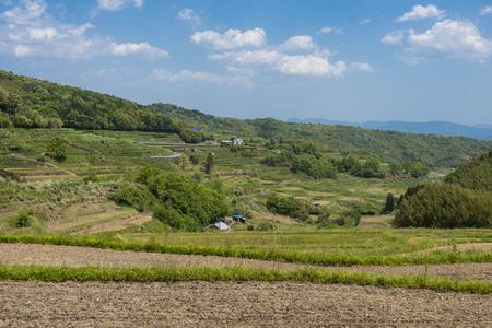 unattended: Uchinari rice terraces