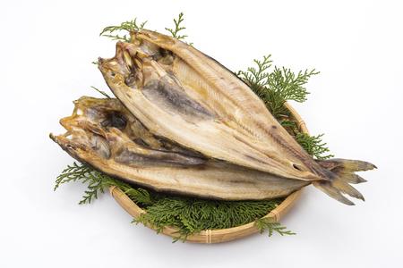 okhotsk atka mackerel