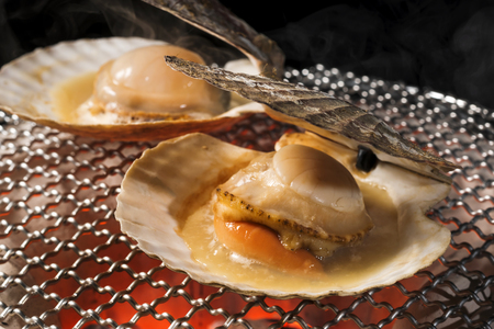 Scallop shell burn with charcoal fire Banco de Imagens