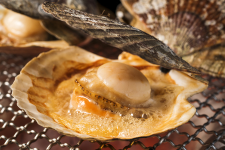 Scallop shell burn with charcoal fire 스톡 콘텐츠