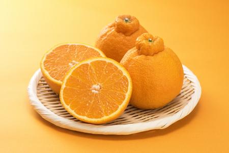 Japanese citrus Dekopon of Siranui, another name is sumo mandarin or sumo citrus. Archivio Fotografico