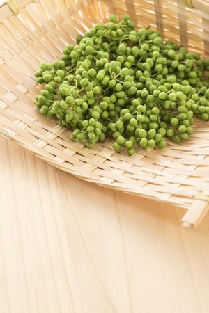 Japanese pepper, Zanthoxylum piperitum