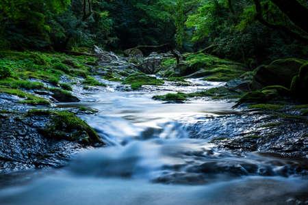 Kikuchi Valley, Kumamoto Japan.