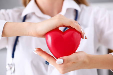 Female doctor hold in arms and cover red toy heart closeup. Cardio therapeutist, student education, CPR, 911 life save, physician make cardiac physical, pulse rate measure, arrhythmia, lifestyle Stock Photo