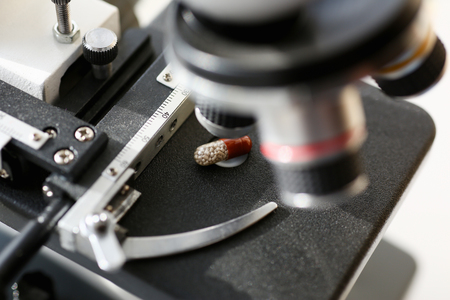 The head of a microscope close-up