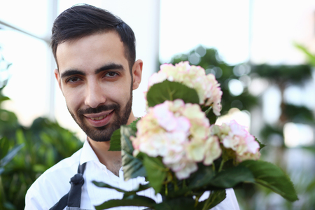 Bearded Male Florist with White Blooming Hydrangea Stockfoto