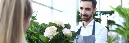 Beard Gardener Holding Hydrangea in Flowerpot Stock Photo