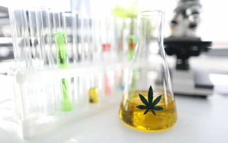 Test tube with natural extract cbd oil in chemisrtry lab research background closeup. Medical marijuana concept