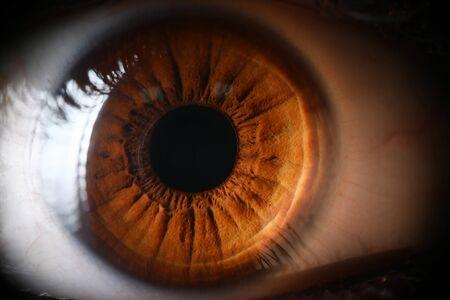 Human brown eye supermacro closeup background. Color contact lens concept