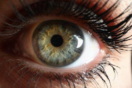 Human green eye supermacro closeup background. Check vision concept 스톡 콘텐츠