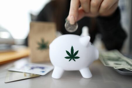 Close-up of person hand putting coin in piggybank with small cannabis symbol on it. Credit cards and cash money from selling marijuana lying on desktop. Medical marijuana concept