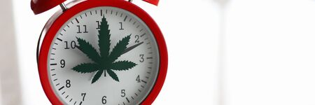 Red alarm clock with marijuana logo on office table closeup background Standard-Bild