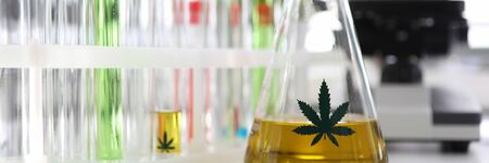 Test tube with yellow cbd oil in chemisrtry lab research background closeup. Medical marijuana concept