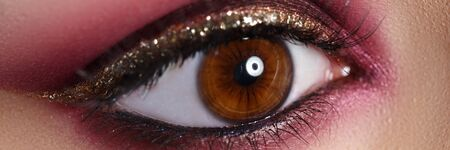 Beautiful make-up in oriental style, eye closeup. Fashionable makeup for events or for photo shoots. Beauty female eyes is emphasized by bright makeup with help flickering eyeshadows, mascara.