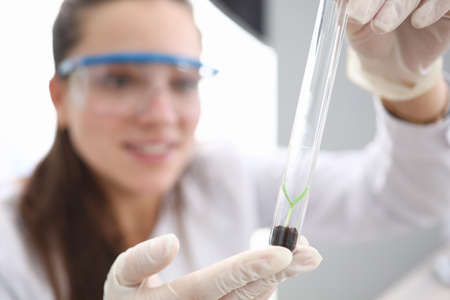 Female hands in white gloves hold test tube with earth and scion inside. Breeding and research of new plant species. Growing seed in laboratory. Environmental protection concept. Standard-Bild