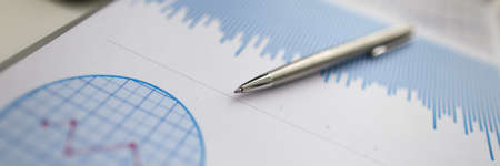Close-up of pen lying on bar chart. Chief manager preparing financial statement for conversation. Work in corporation. Business meeting and company concept