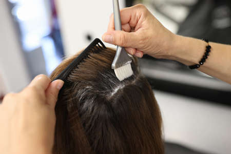 Hairdresser applies hair dye to clients hair with brush in beauty salon. Hairdressing services concept Фото со стока