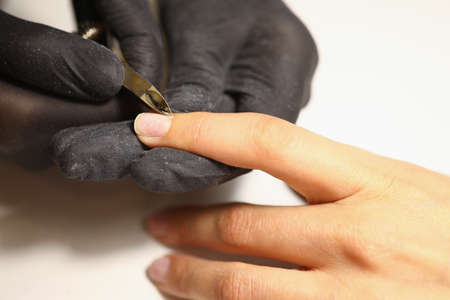Gloved manicurist uses nippers to cut cuticles on nails. Manicure and pedicure tools concept.