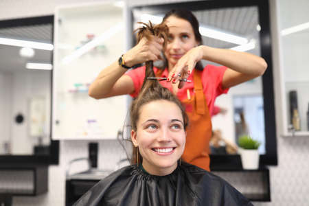 Female client sits in chair in a hairdressing salon. The master holds hair and scissors. Hairdressing training concept