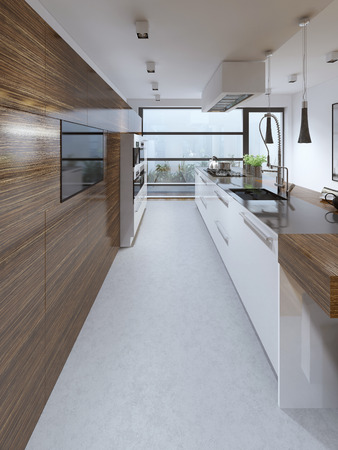 contemporary kitchen: Contemporary kitchen trend. 3D render