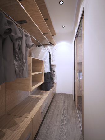 wardrobe closet: Idea of minimalist walk-in wardrobe. White walls, dark hardwood flooring, glass doors. 3D render Stock Photo