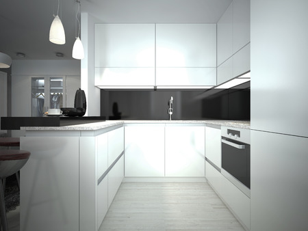 white kitchen: Contemporary Kitchen Style. 3D images