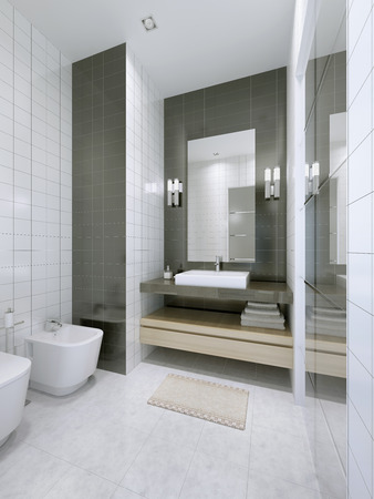 tile flooring: White bathroom in hotel apartments. Marble tile flooring, double colored tiled walls. 3D render