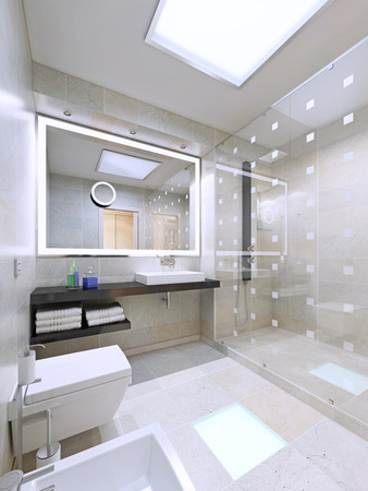 glass partition: Bathroom interior in modern and stylish house. 3D render