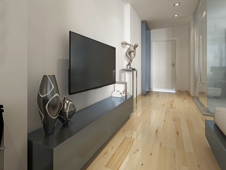 modern apartment: Modern TV unit with the decor figurine, modern living room. 3D render.