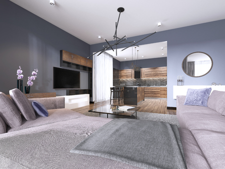 studio apartment living room with fabric sofa and TV storage and kitchen with console on the wall. 3d rendering Stock Photo