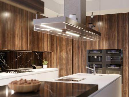 Kitchen design hood and built-in kitchen appliances in a modern kitchen. 3d rendering.