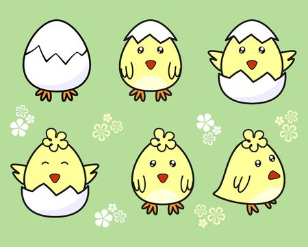 Cute chick hatching from an egg. Set of baby chickens from an egg on a green background with florets. Concept for children print, Easter design, greeting cards. Vector decorative elements for kids