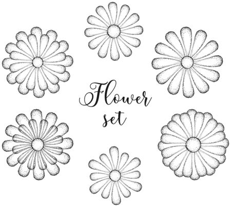 Black and white abstract flowers with dot texture. Graphic hand drawn image. Elements for decoration. Vector