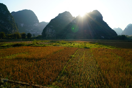 pastoral scenery: Chinese pastoral scenery Stock Photo