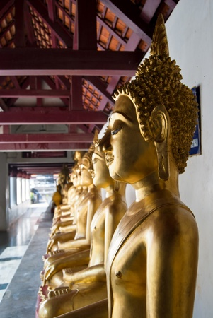 Row of Golden Buddha statue in Thailand Buddha Temple , Asia  photo