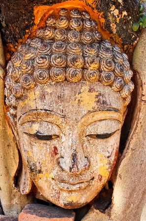 Head of Sandstone Buddha in The Tree Roots , Thailand  photo