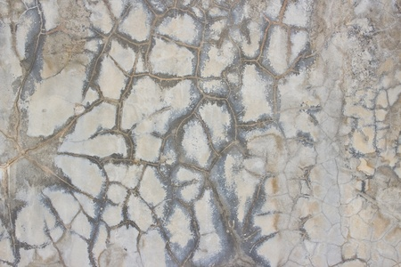 Texture surface of concrete wall  photo