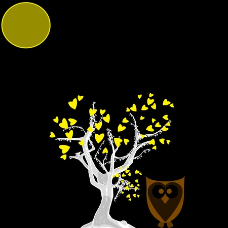 Owl in tree at night  Stock Photo - 13260599