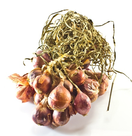 bulb and stem vegetables: bundle of red onion on white background