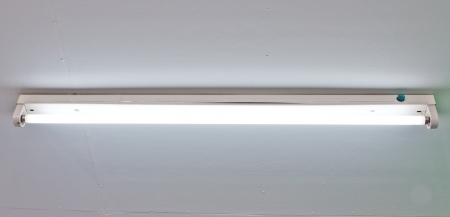 Fluorescent lamps in the ceiling  photo