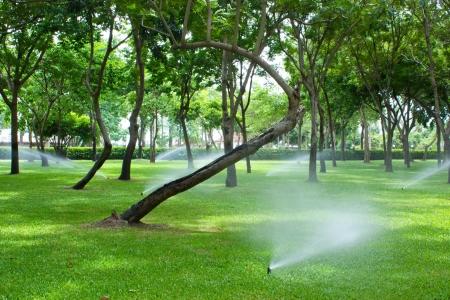 L'arrosage des pelouses et le parc avec gicleurs