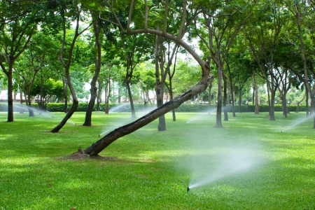 Watering the Lawn and park with Sprinkler photo