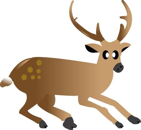 cute cartoon a deer on white ground Stock Photo - 17800600
