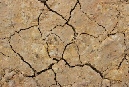 Closeup of dry soil texture. A beautiful patterns. Stock Photo - 18160674