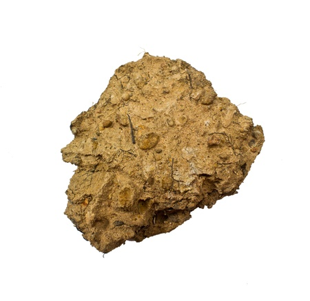 Dirt Clods Isolated on a white background Stock Photo - 18573223