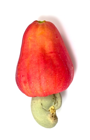Tropical Cashew fruits on a white background .