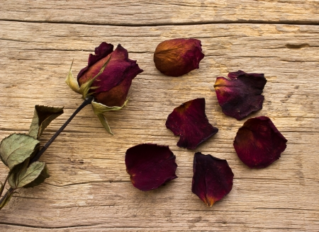 Dry red roses on old wooden background photo